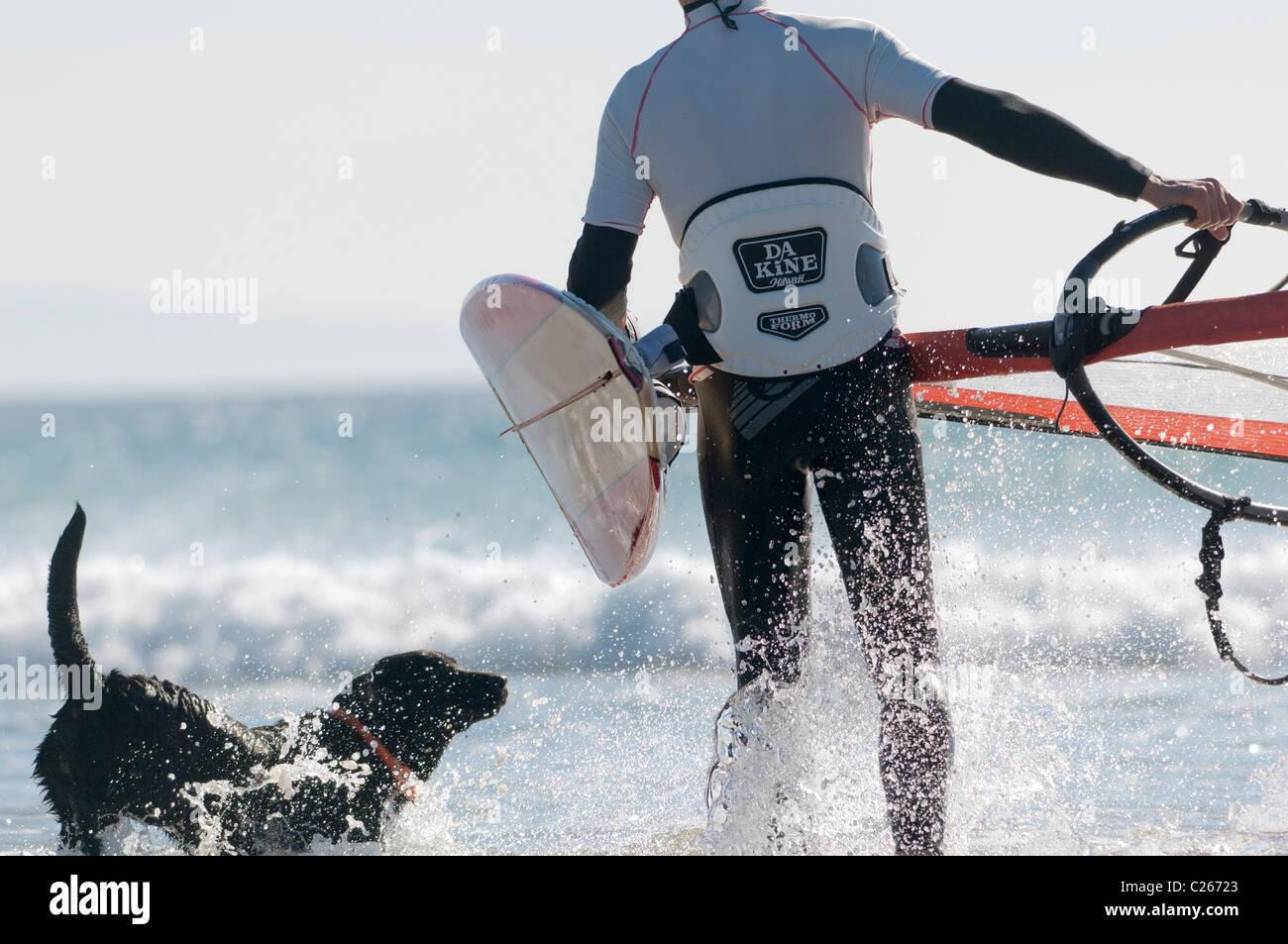 Man and his pet dog at the beach. - Stock Image
