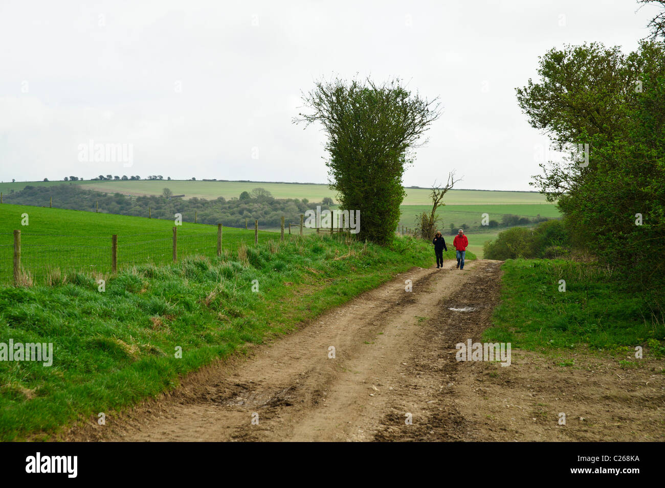 A couple walking along a bridleway in the South Downs - Stock Image