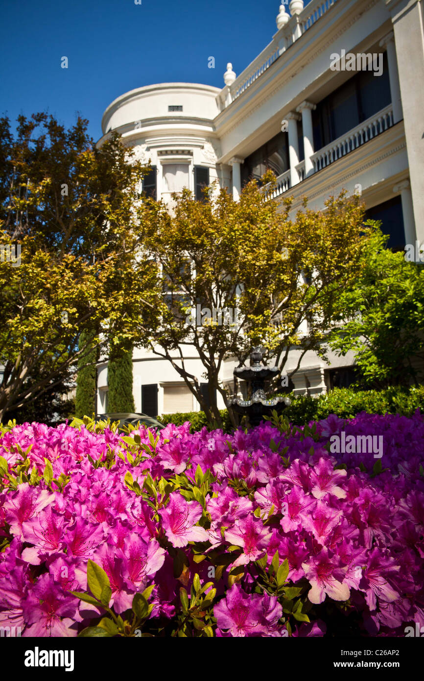 Historic homes along the Battery in Charleston, SC with azaleas in bloom. - Stock Image