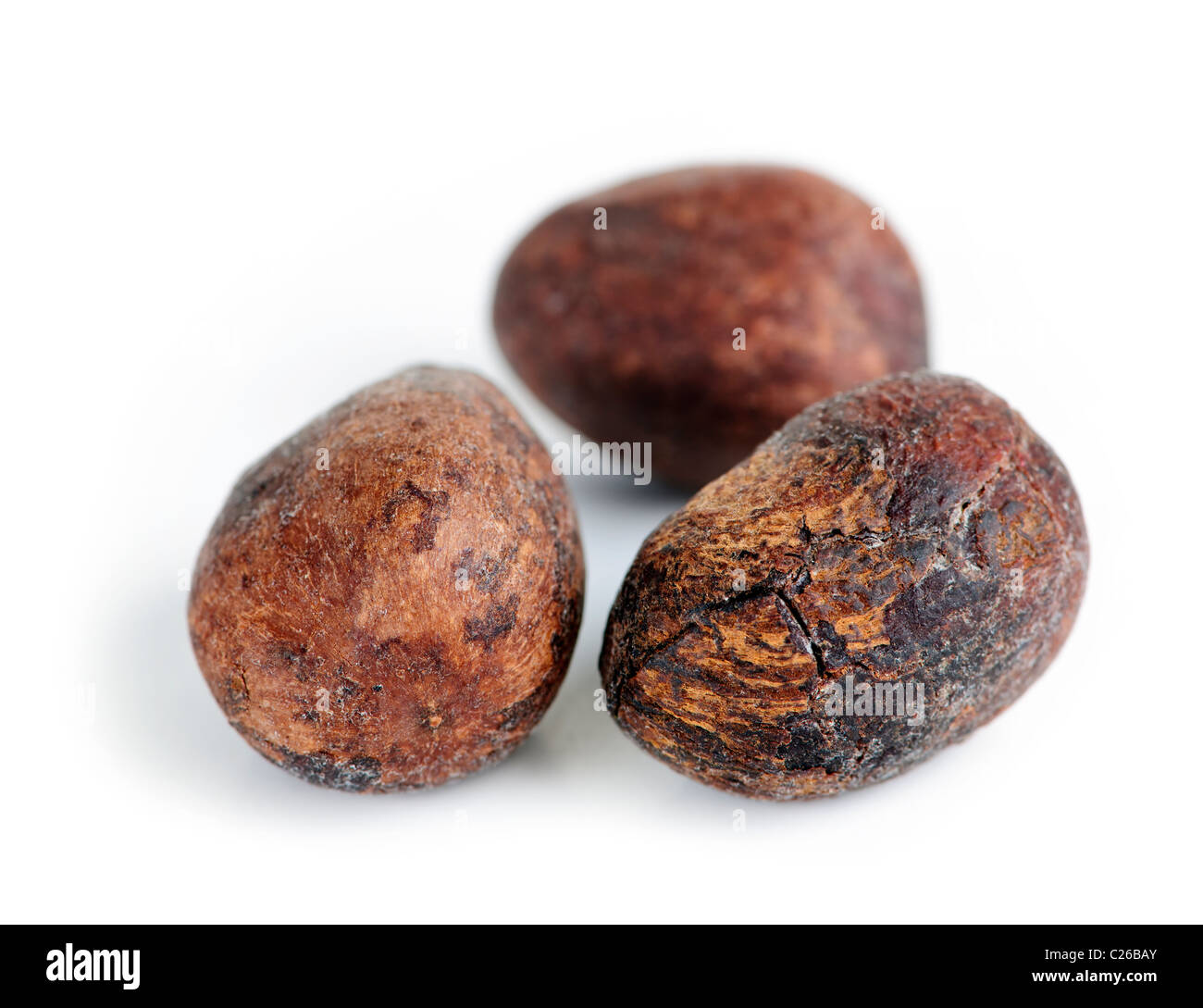 Raw unprocessed shea nuts isolated on white background - Stock Image
