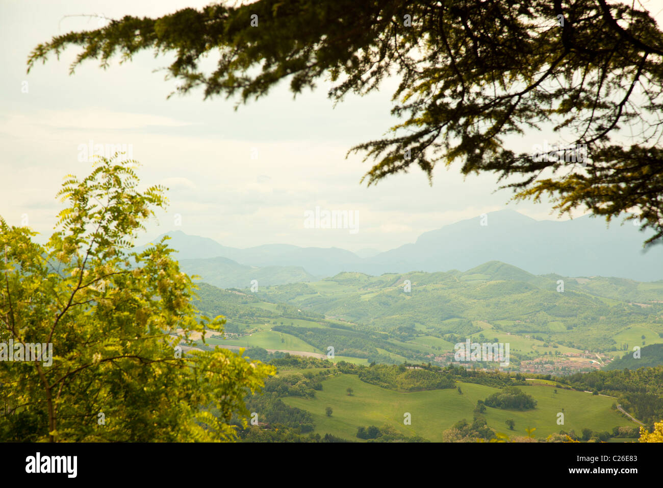 Rolling hills and lush countryside in Le Marche Italy. - Stock Image