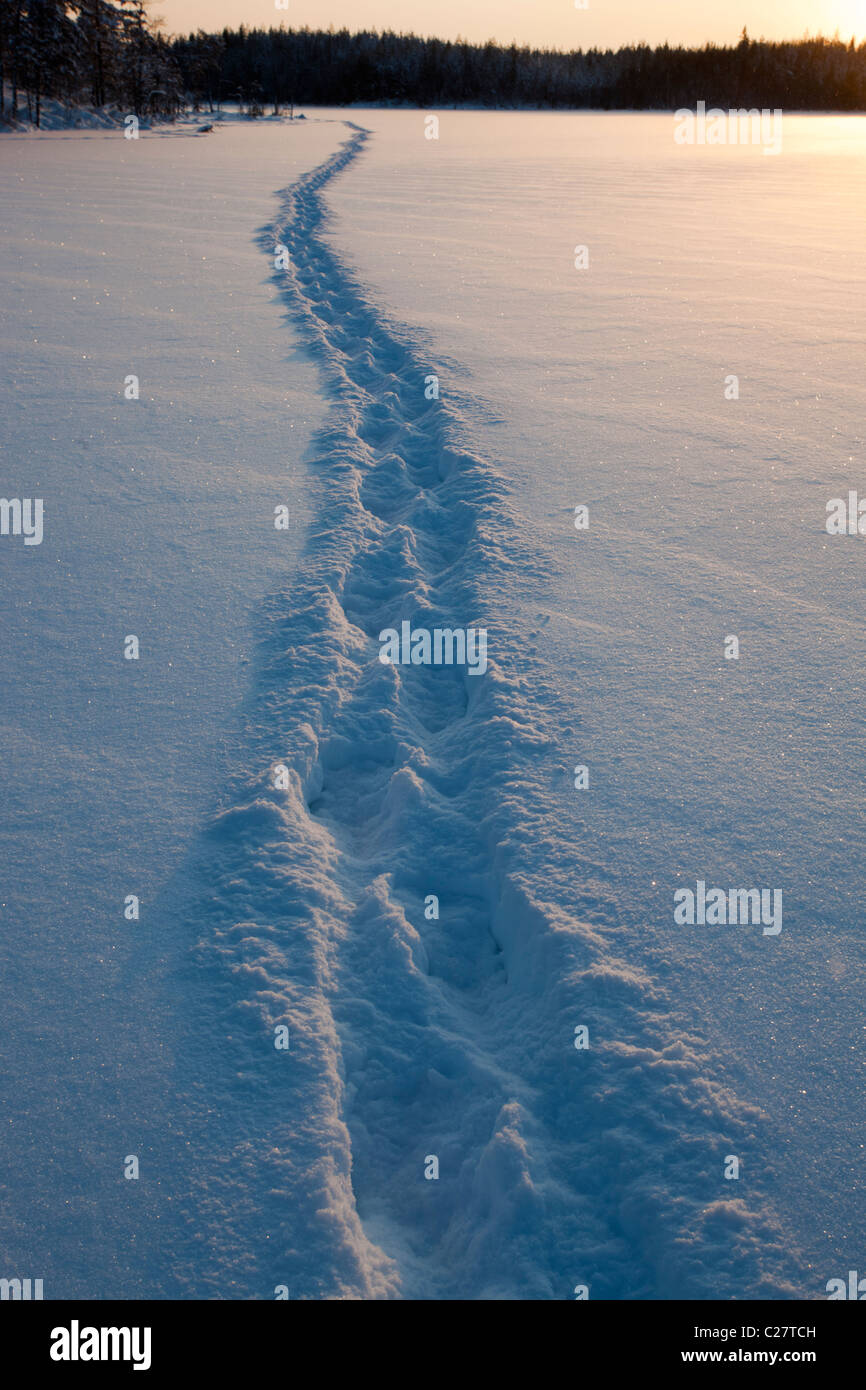 Human trail on snow covered lake ice , Finland Stock Photo
