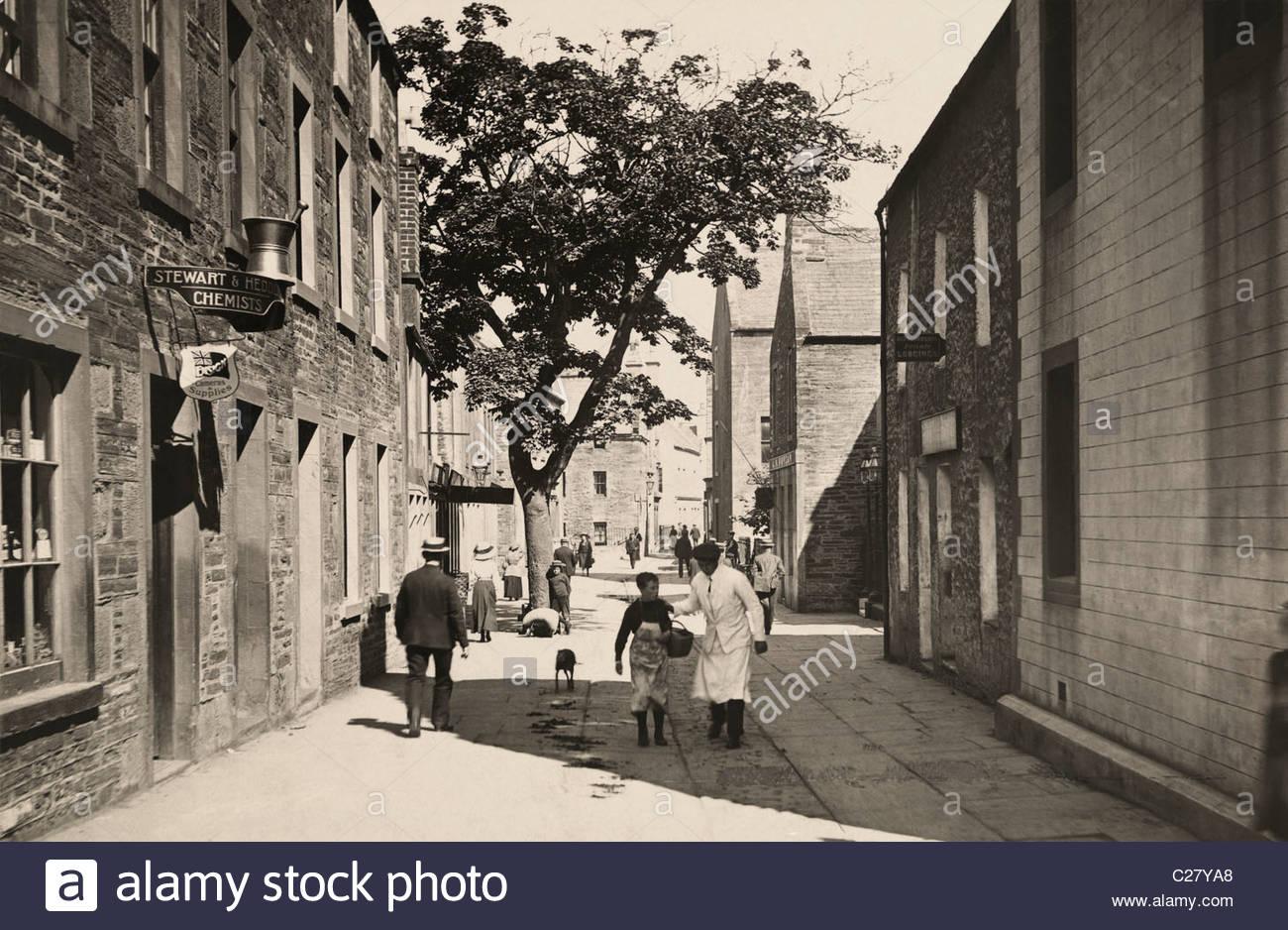 A single tree grows on Albert street. - Stock Image
