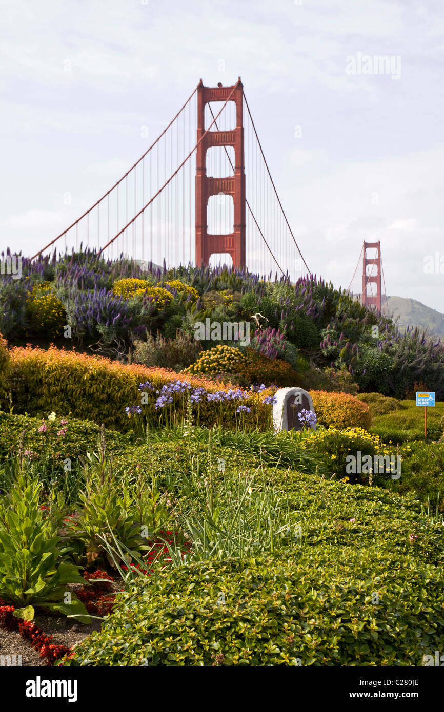 View of Golden Gate Bridge and flower garden from viewpoint, San Francisco Bay, California, USA - Stock Image