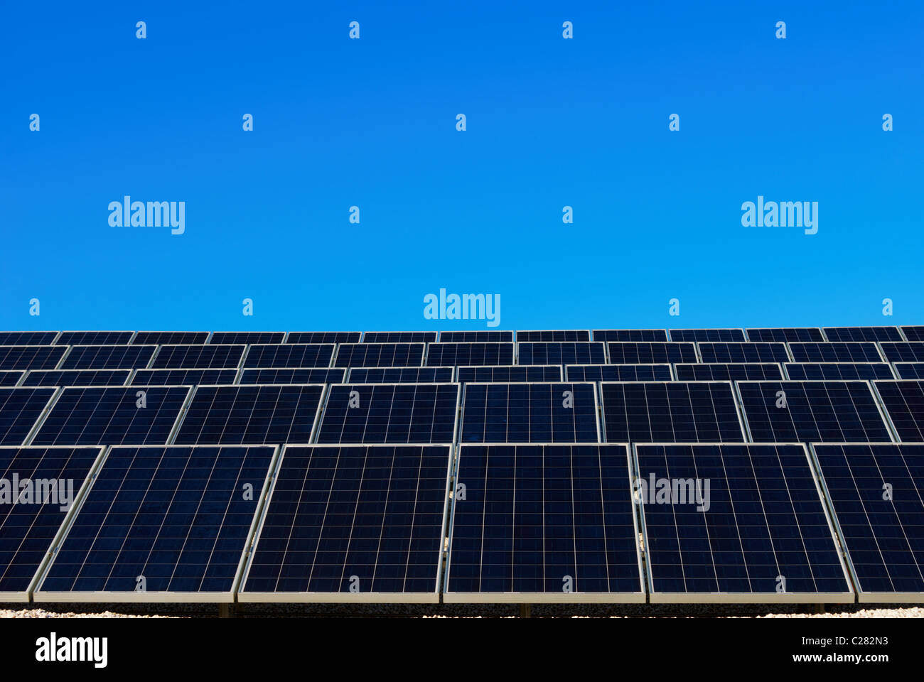 Blue and white solar panel in a row under clear blue sky - Stock Image