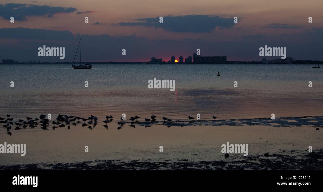 Key Biscayne at sunset, Florida, USA - Stock Image