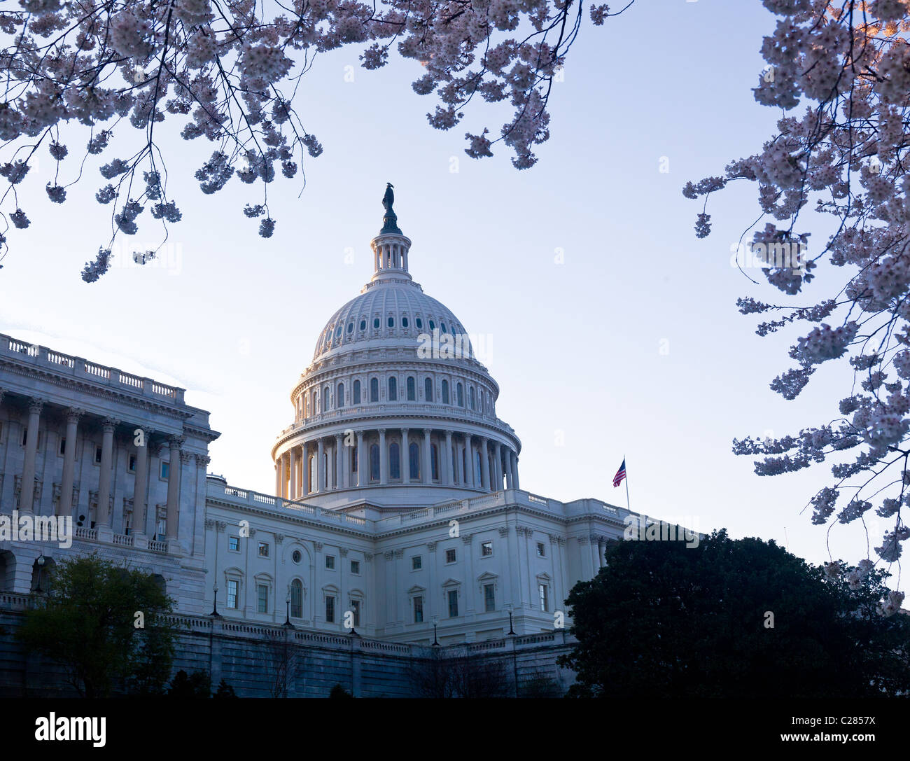Capitol building in Washington DC illuminated early in the morning ...