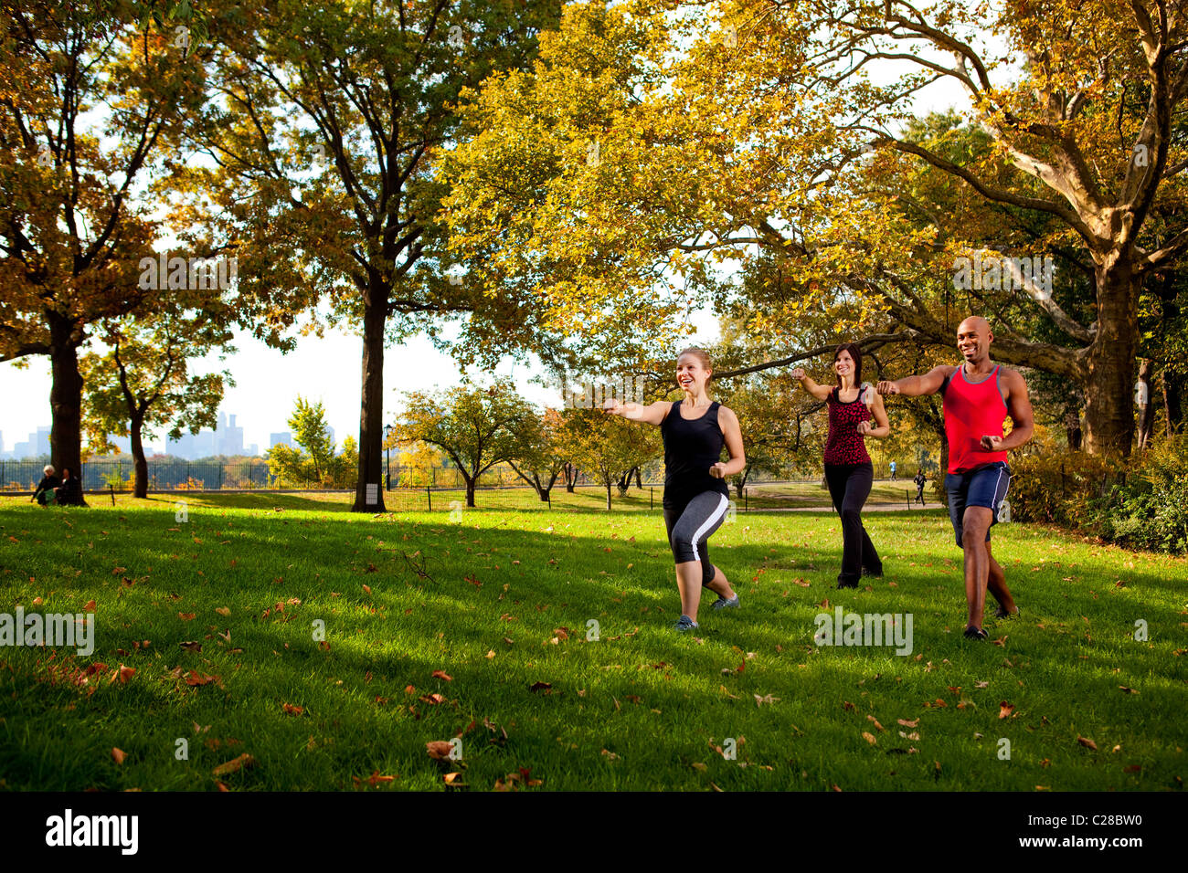 A group of young adults training martial arts in the park - Stock Image