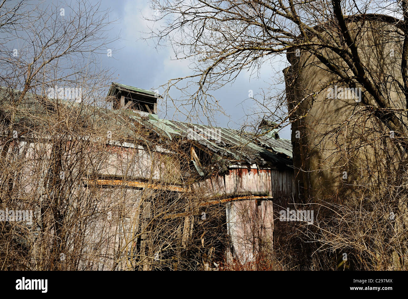 Overgrown decaying barn and silo in Illinois, USA. - Stock Image