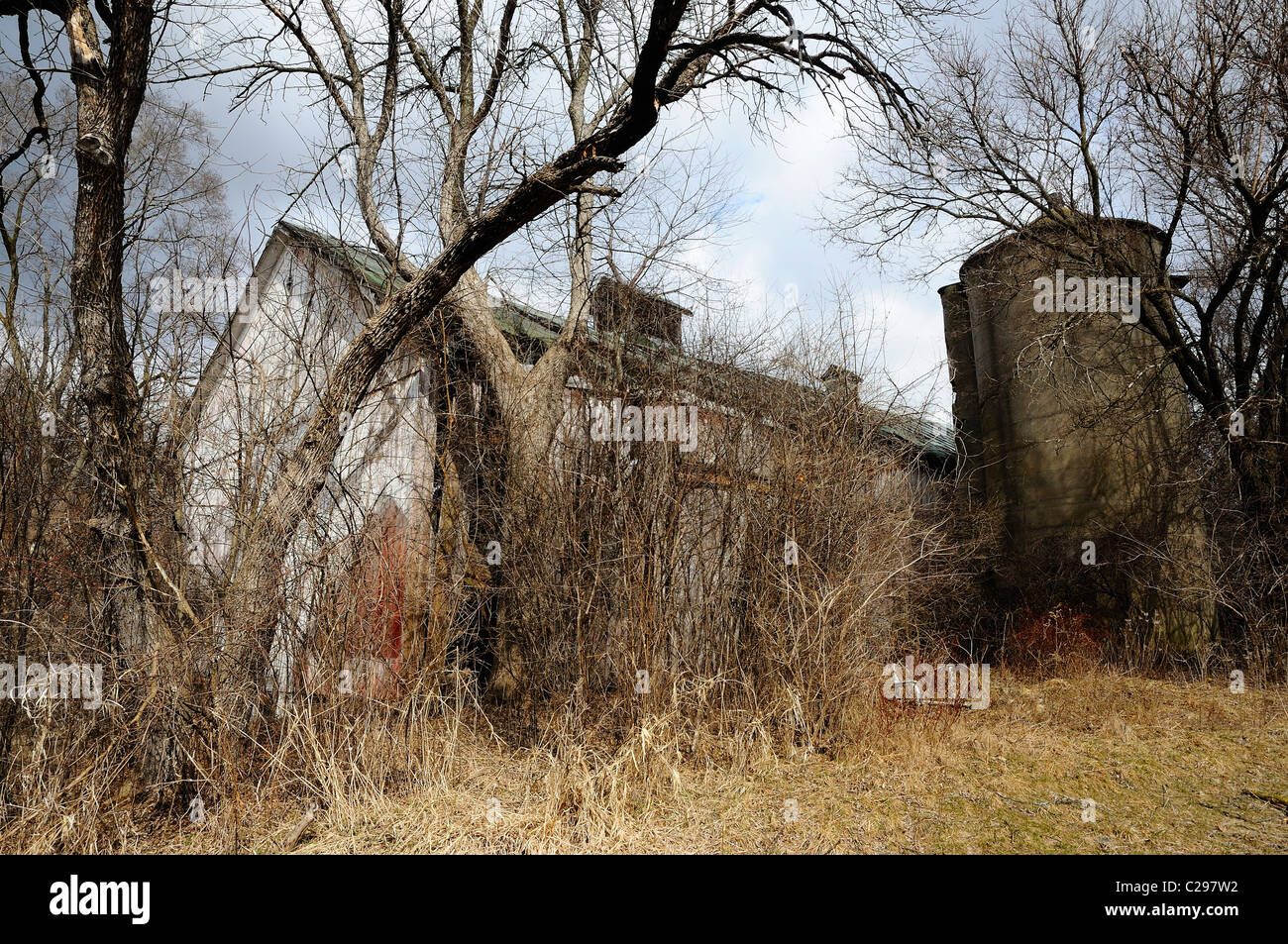 Decaying and neglected barn and silo in Northern Illinois, USA - Stock Image