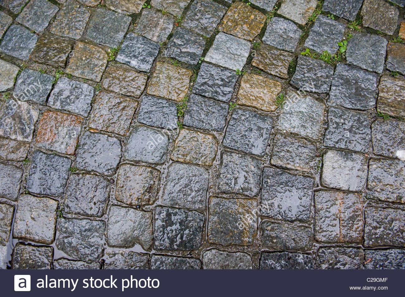 Cobblestones glisten with rain. - Stock Image