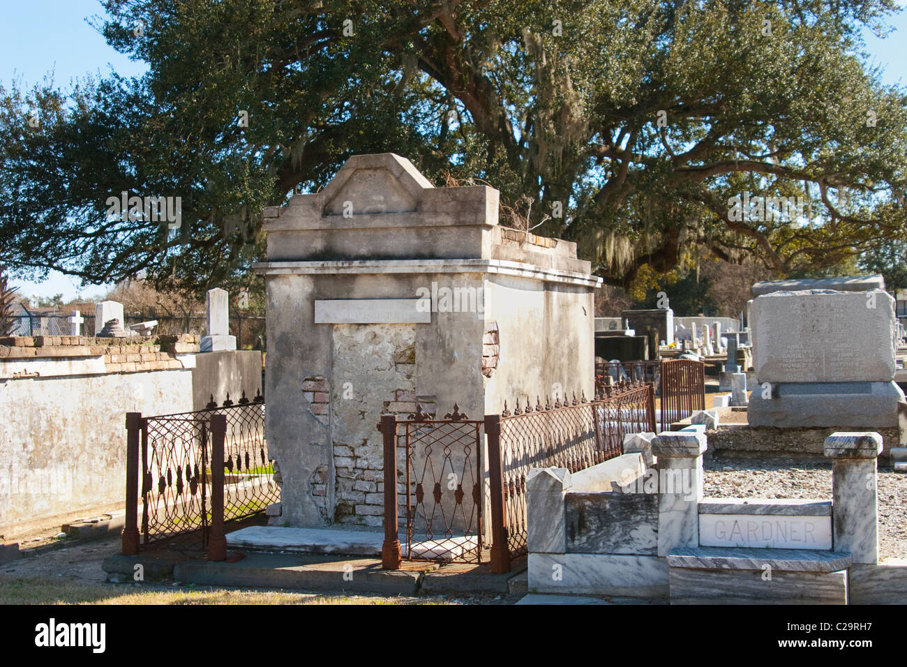 Antique tomb with iron fencing shaded by a 100 year old Live Oak tree, in a New Orleans cemetery. - Stock Image