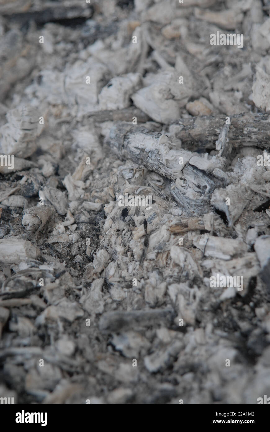 Wood ash, residue powder left after the combustion of wood. - Stock Image
