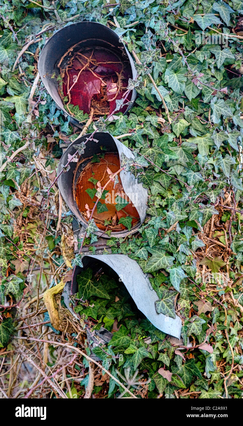 Disused and heavily damaged traffic lights festooned with ivy - Stock Image