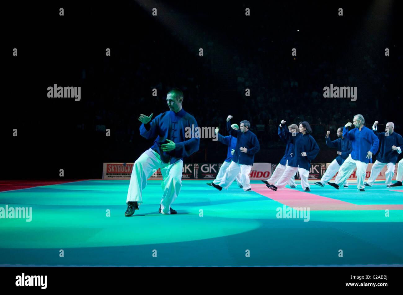 TaiChi Yang at Festival des Arts Martiaux de Bercy, Paris. - Stock Image