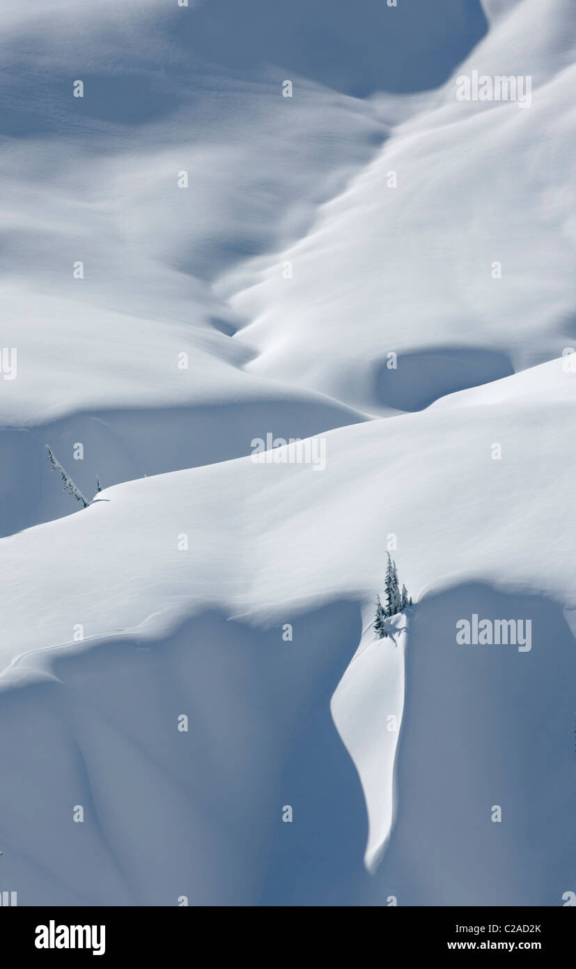 Winter light and shadows creating patterns on snow covered alpine slopes in the Mount Baker Wilderness, North Cascades - Stock Image