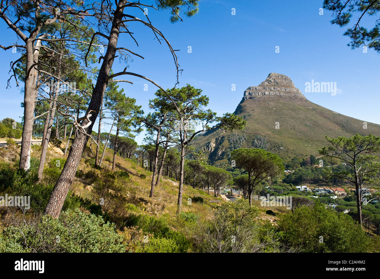Lion's Head view from Tafelberg, Cape Town, South Africa - Stock Image