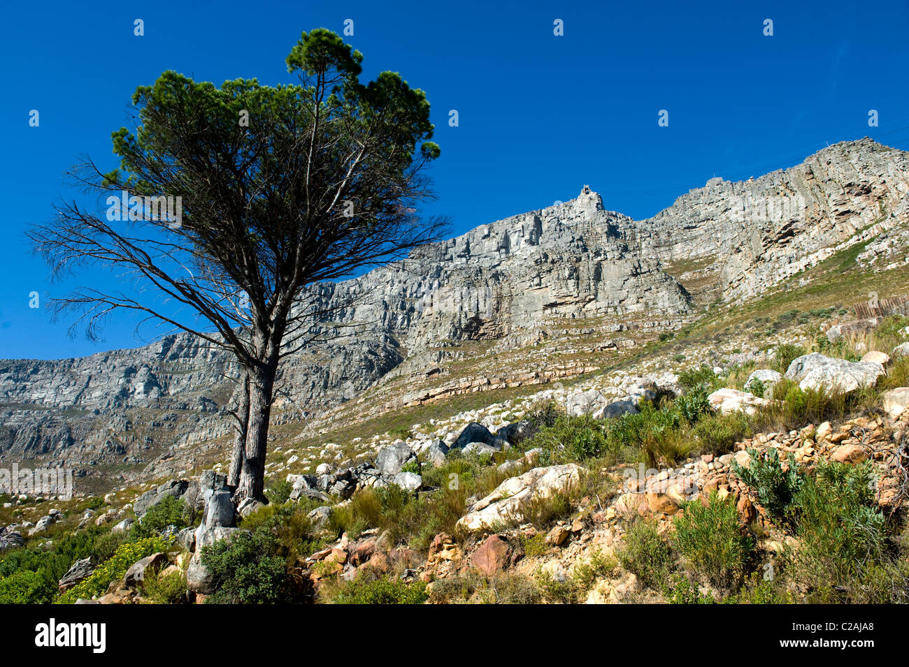 Table Mountain Upper Cable Station view from Tafelberg, Cape Town, South Africa - Stock Image