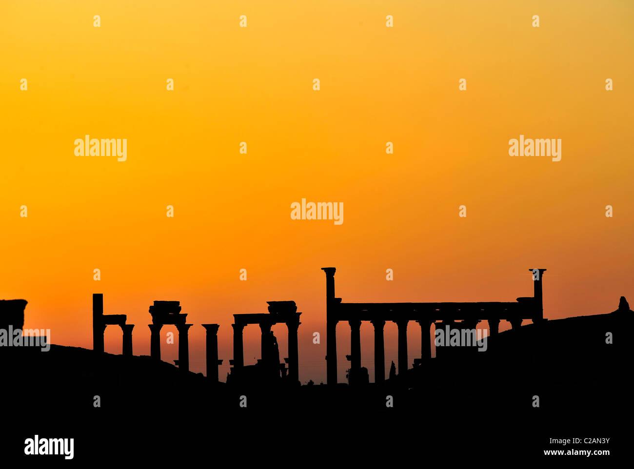 Roman ruins during sunset in Palmyra, Syria on March 4, 2011. Sonnenuntergang über den Ruinen, Säulen - Stock Image