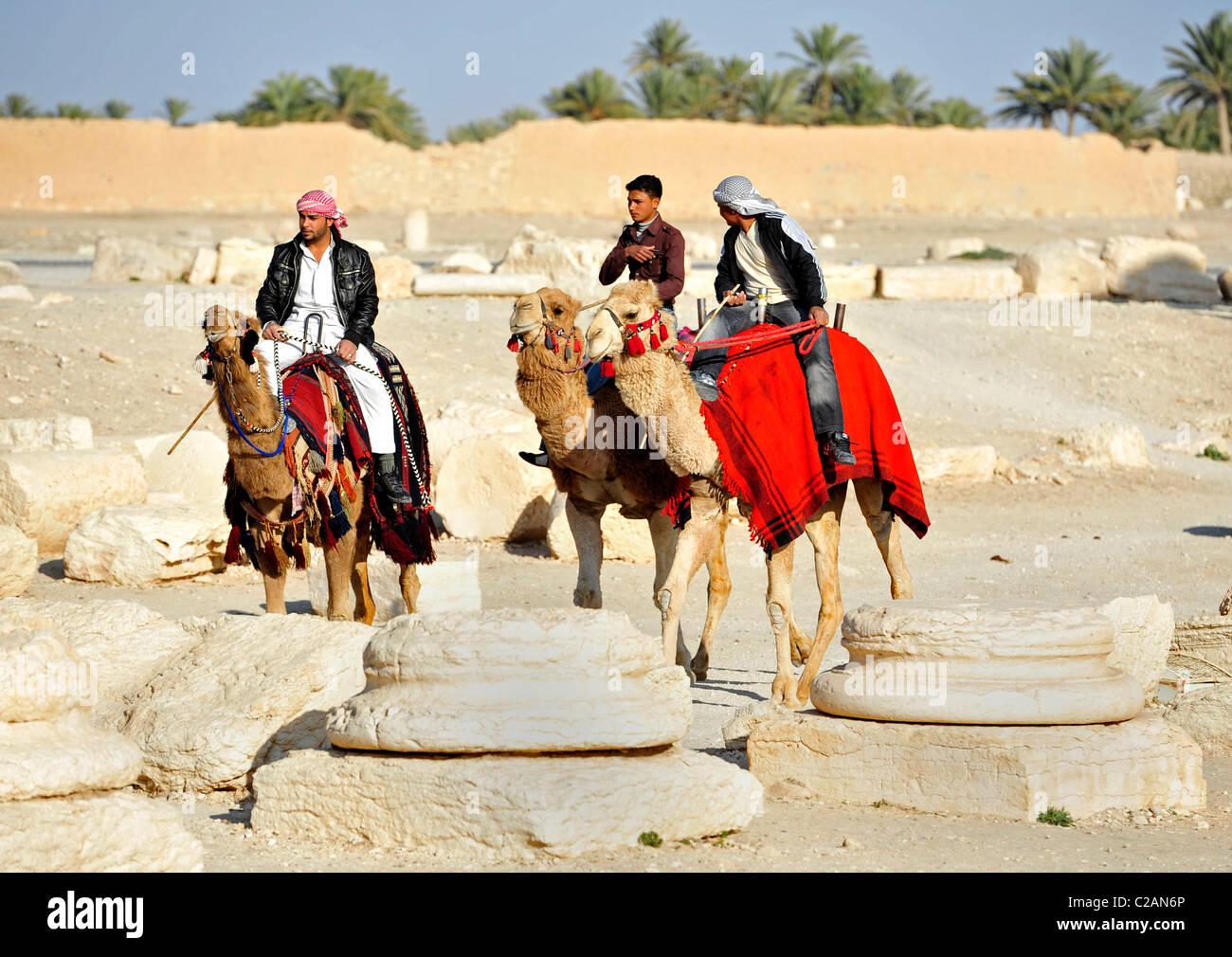 Three men rides camels in Palmyra, Syria on March 4, 2011. Männer auf Kamelen an den Ruinen, Säulen von - Stock Image