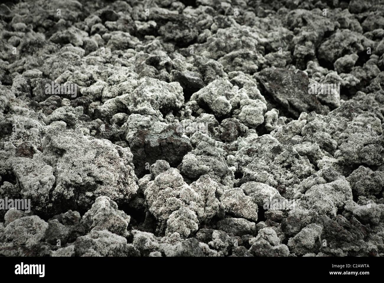 Lava field, close-up - Stock Image