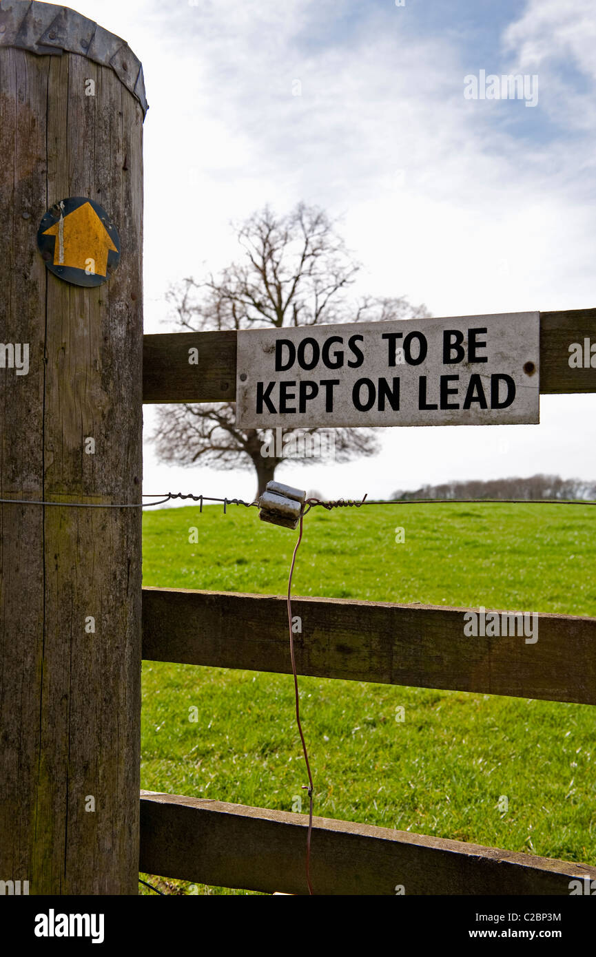 Dogs To Be Kept On Lead sign - Stock Image