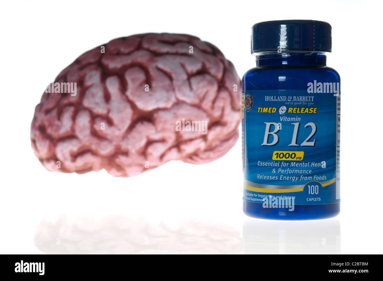 Bottle of vitamin B-12 tablets, 1000mg (1000 GDA) alongside a model brain - Stock Image