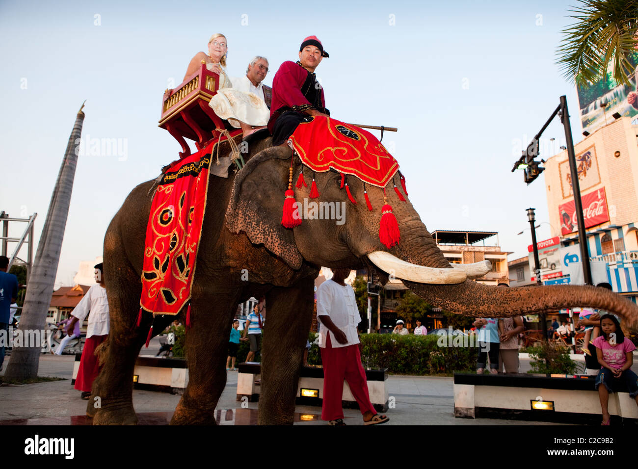 Bride and groom march on the elephant with mahout in downtown Lampang. - Stock Image