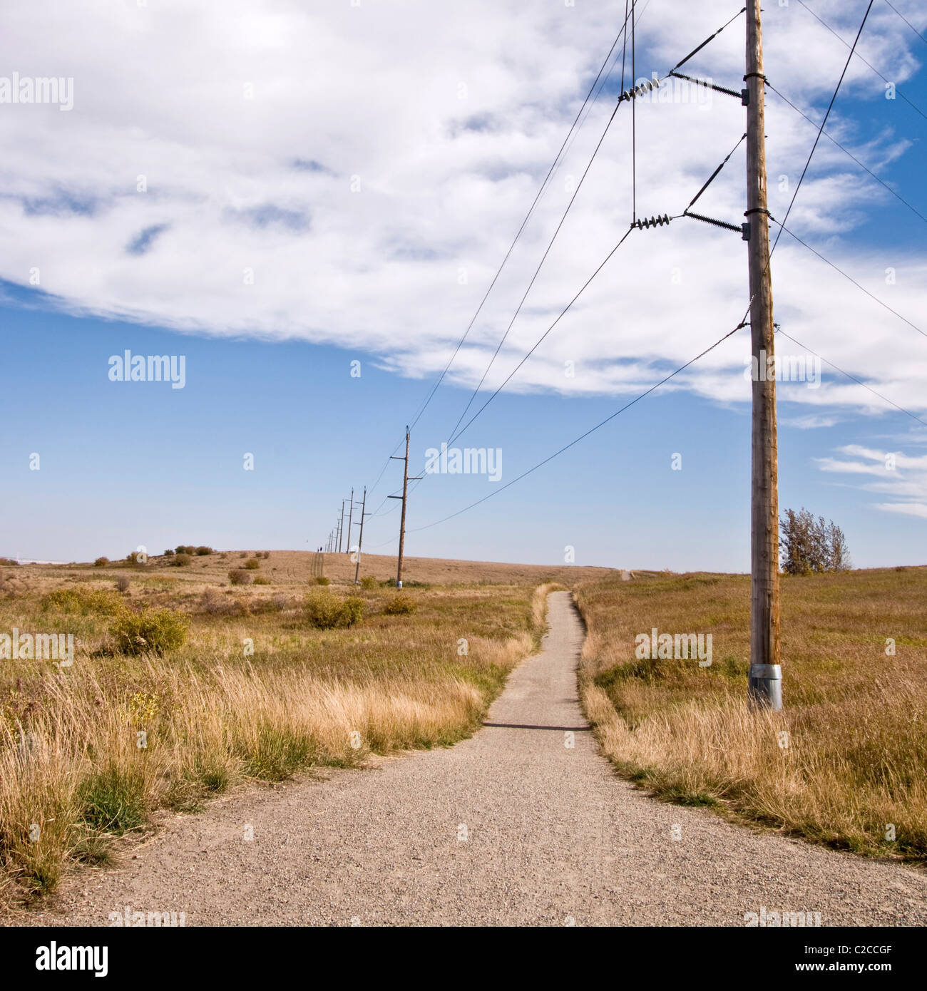 Power lines dotting a walking trail in Nosehill Park, a massive urban park in Calgary, Alberta, Canada. - Stock Image