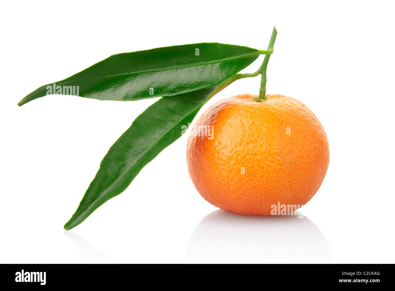 Tangerine with leaves isolated on white - Stock Image