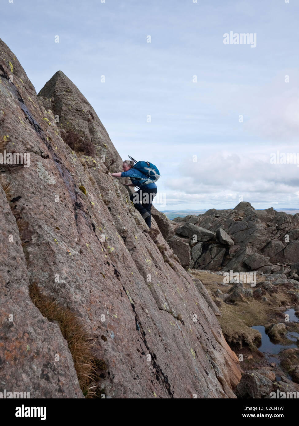 A female hill walker tackles a section of grade 1 scrambling on Moel Siabod, Snowdonia - Stock Image