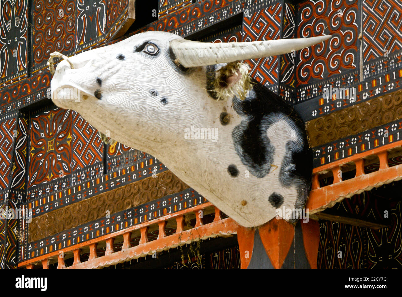 Water buffalo head on Torajan house, Kete Kesu, Tana Toraja, South Sulawesi, Indonesia - Stock Image