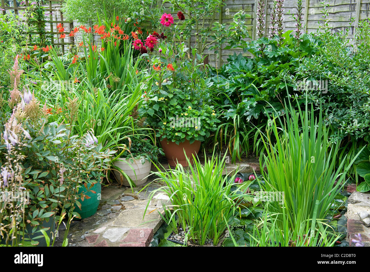 urban garden with pond and pot plants - Stock Image