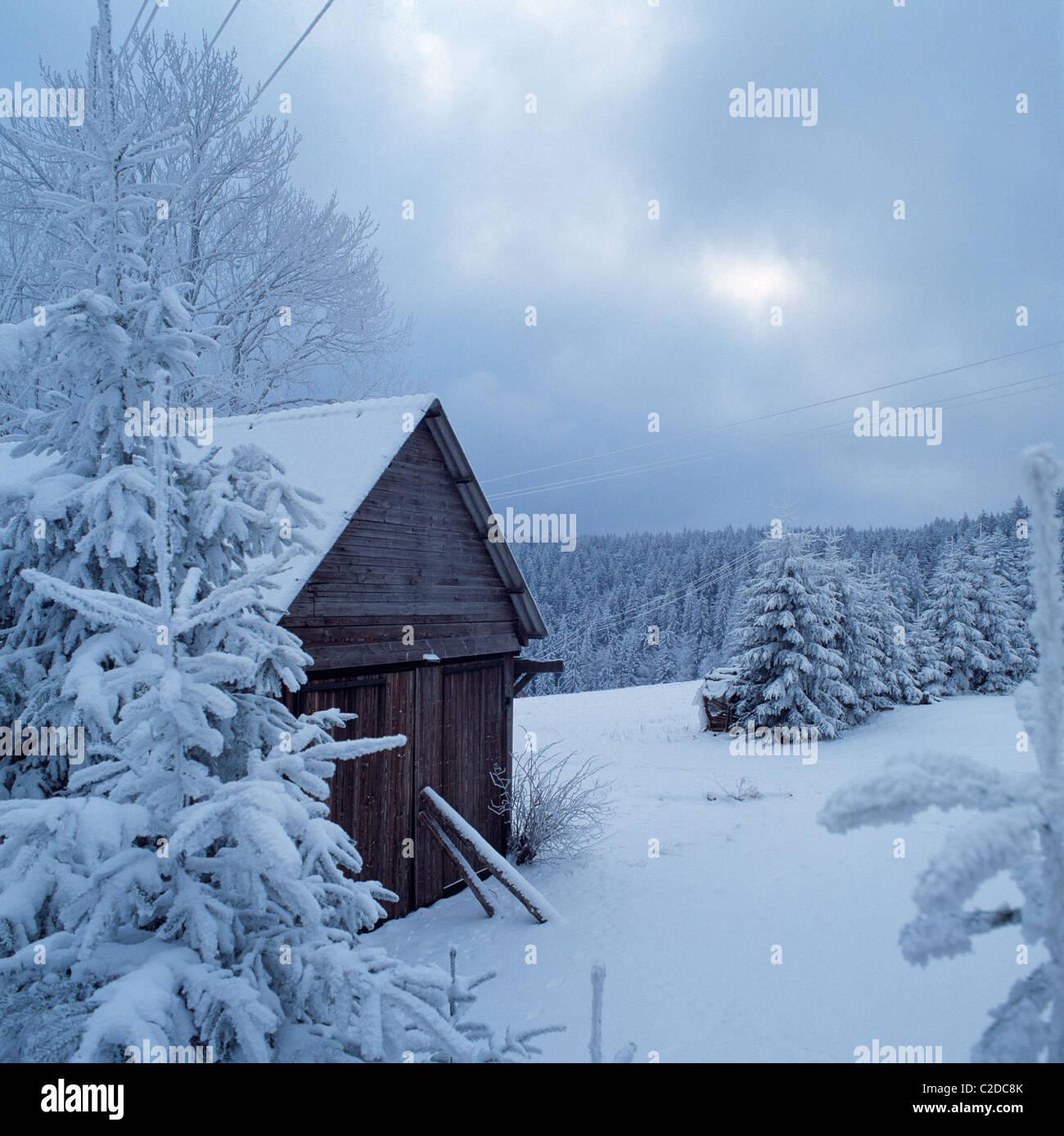 Winterlandschaft, verschneite Tannen und eine Holzhuette in Schoenwald im Schwarzwald, Gutachtal, Baden-Wuerttemberg - Stock Image