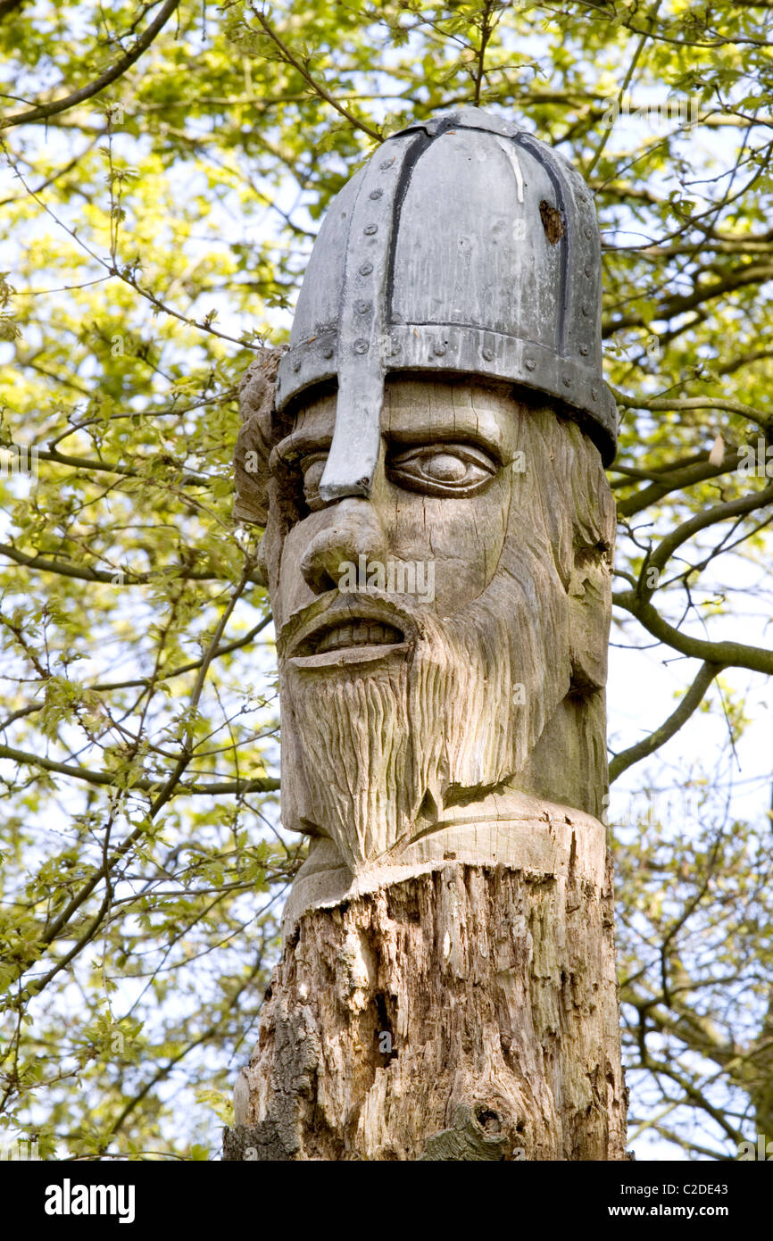 A figure of a Saxons head cut into a dead tree trunk at a country park in Essex, England. Picture shows damage by - Stock Image