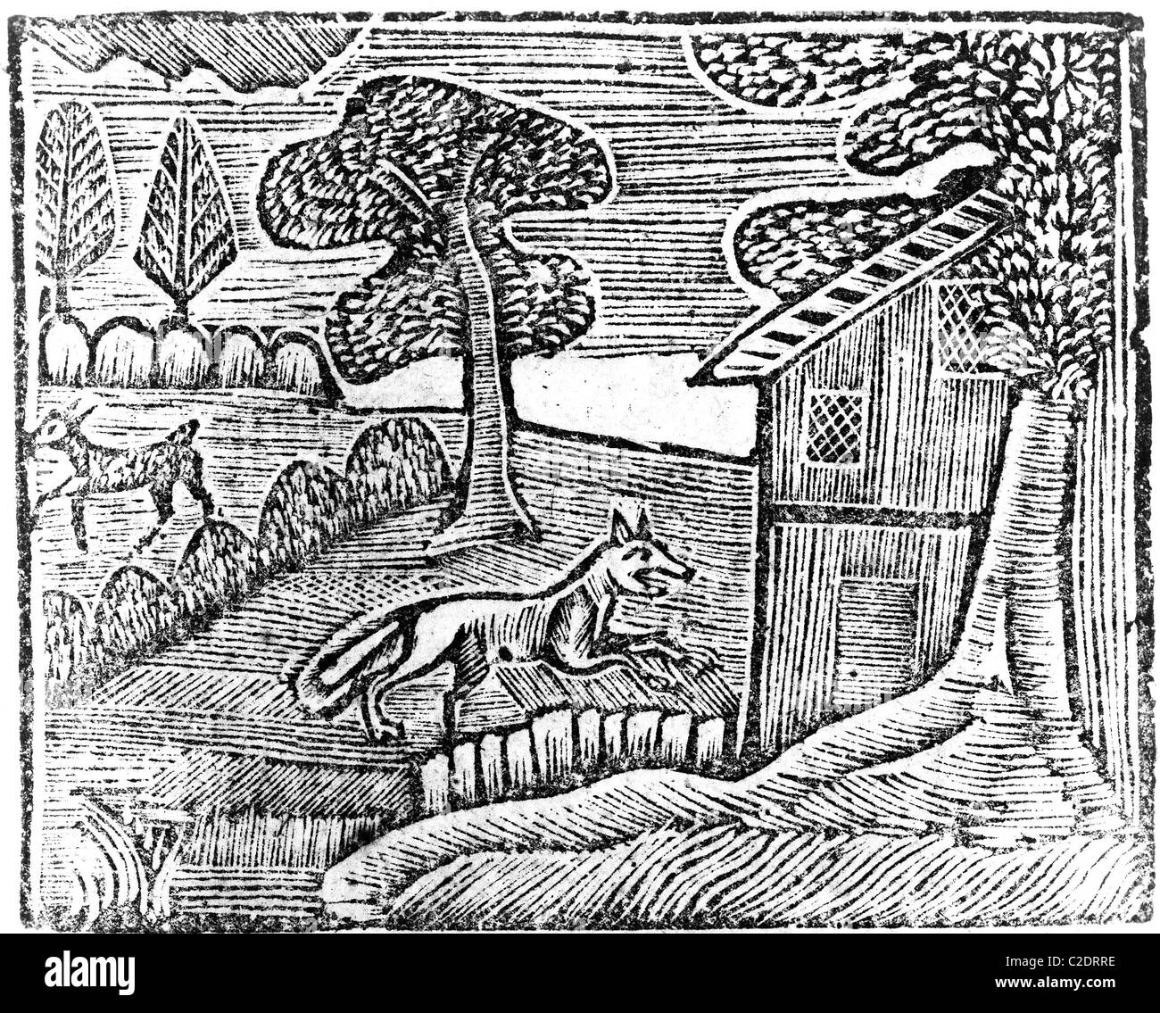 Woodcut by Thomas Dilworth - Stock Image