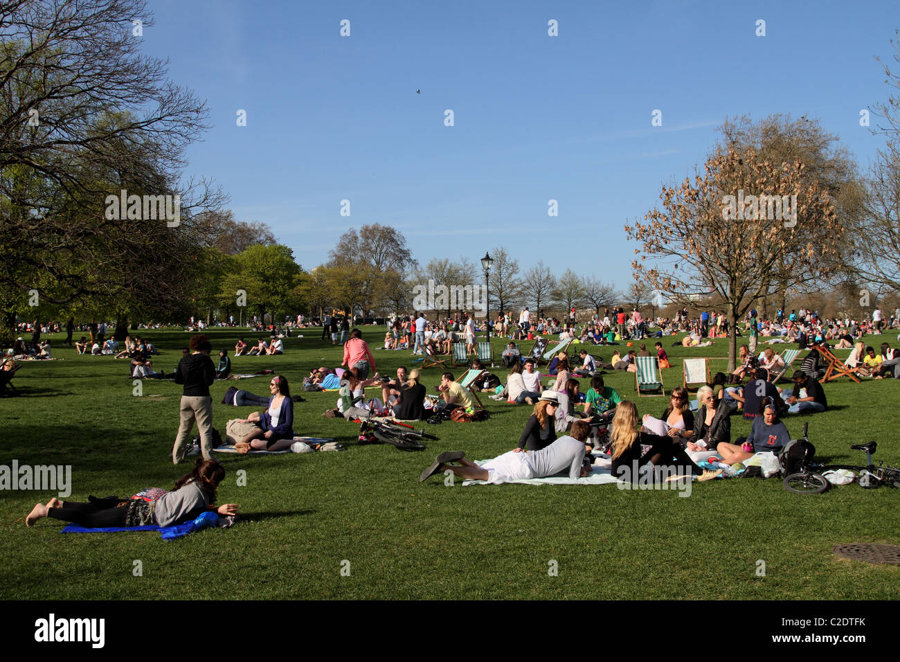 Hyde Park summer relaxing London - Stock Image