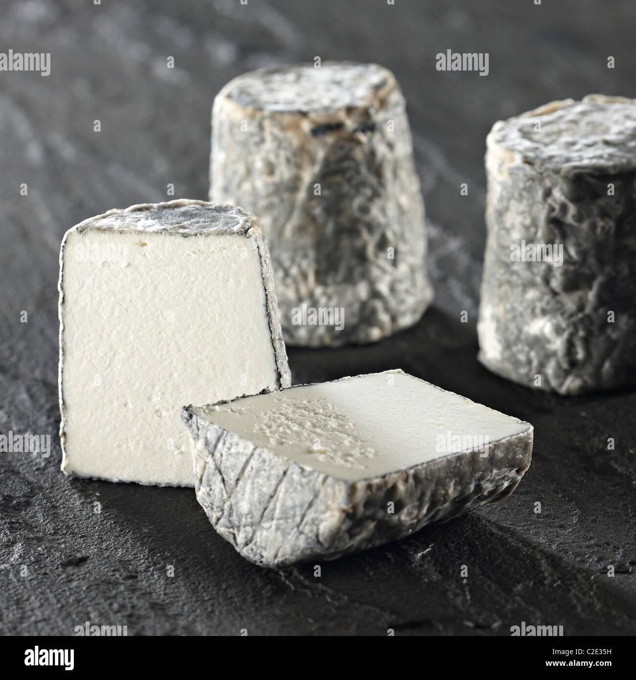Dorstone goats cheese - Stock Image
