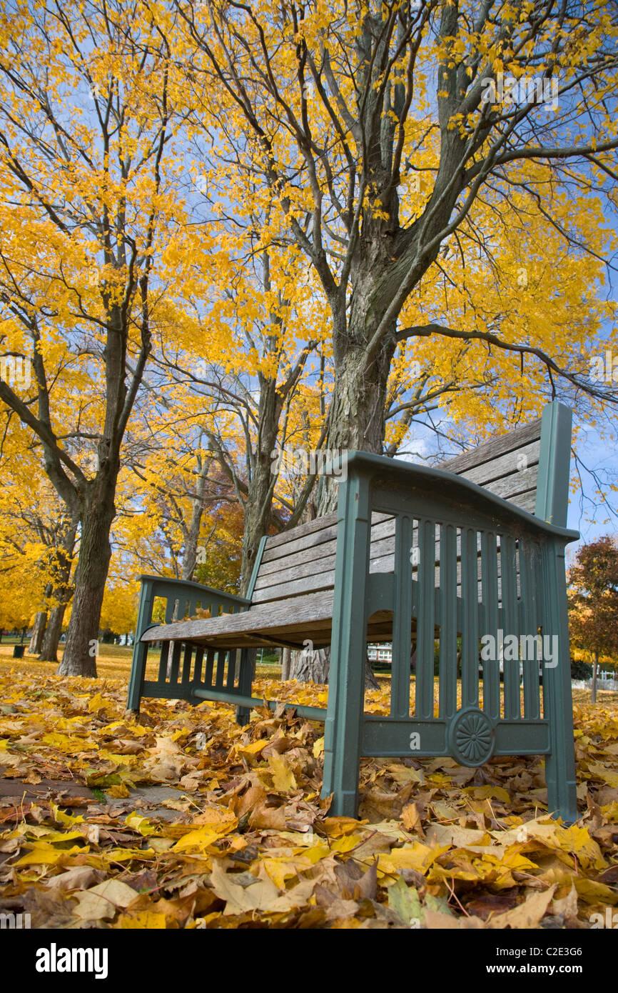bench in autumn, Lake Geneva, Wisconsin - Stock Image
