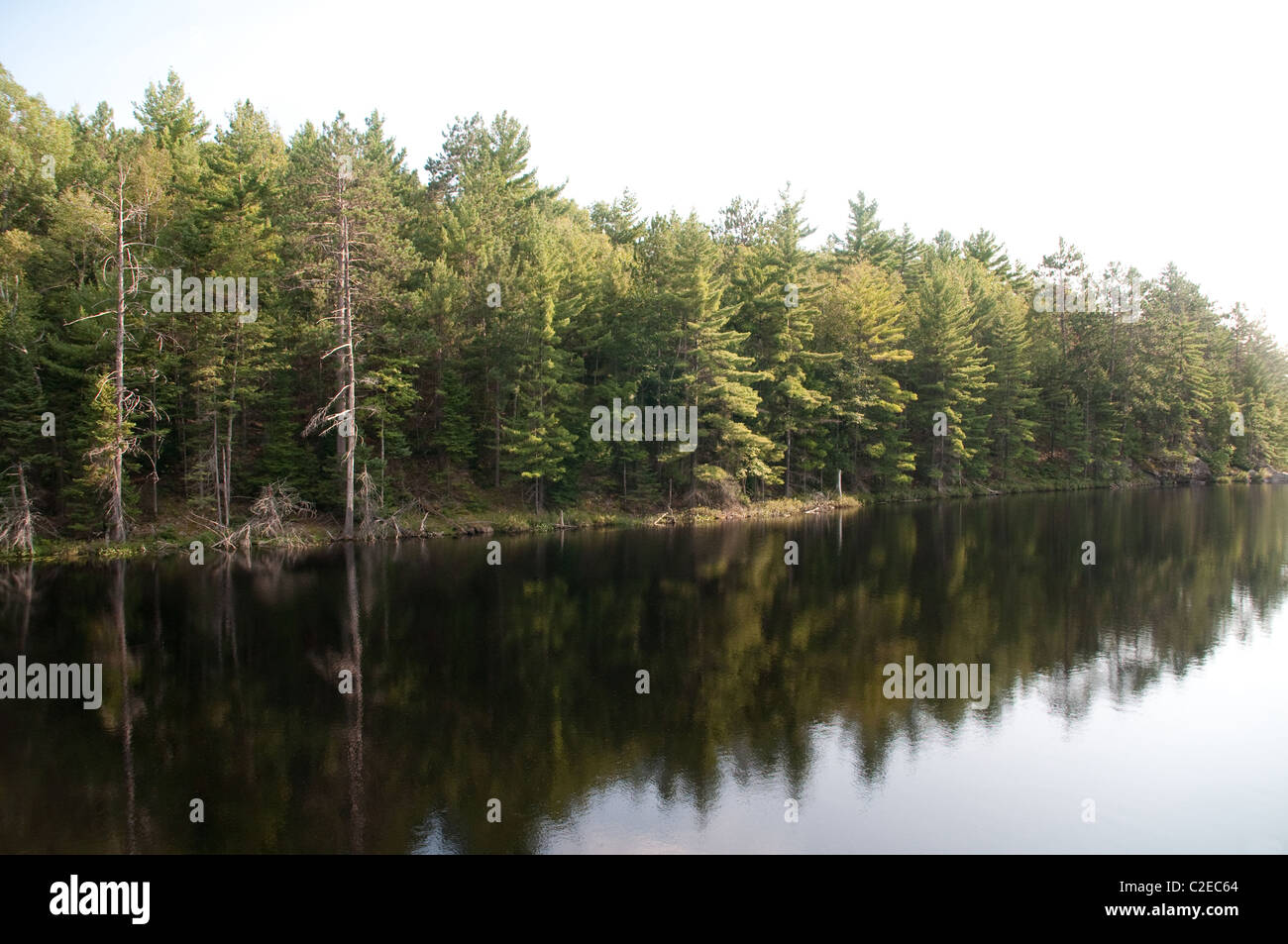 A view of Essens Lake at Bon Echo Provincial Park in Southern Ontario, Canada. - Stock Image
