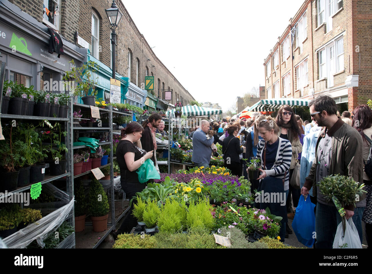 Columbia Road Flower Market located in East London, England, United Kingdom. Photo:Jeff Gilbert - Stock Image