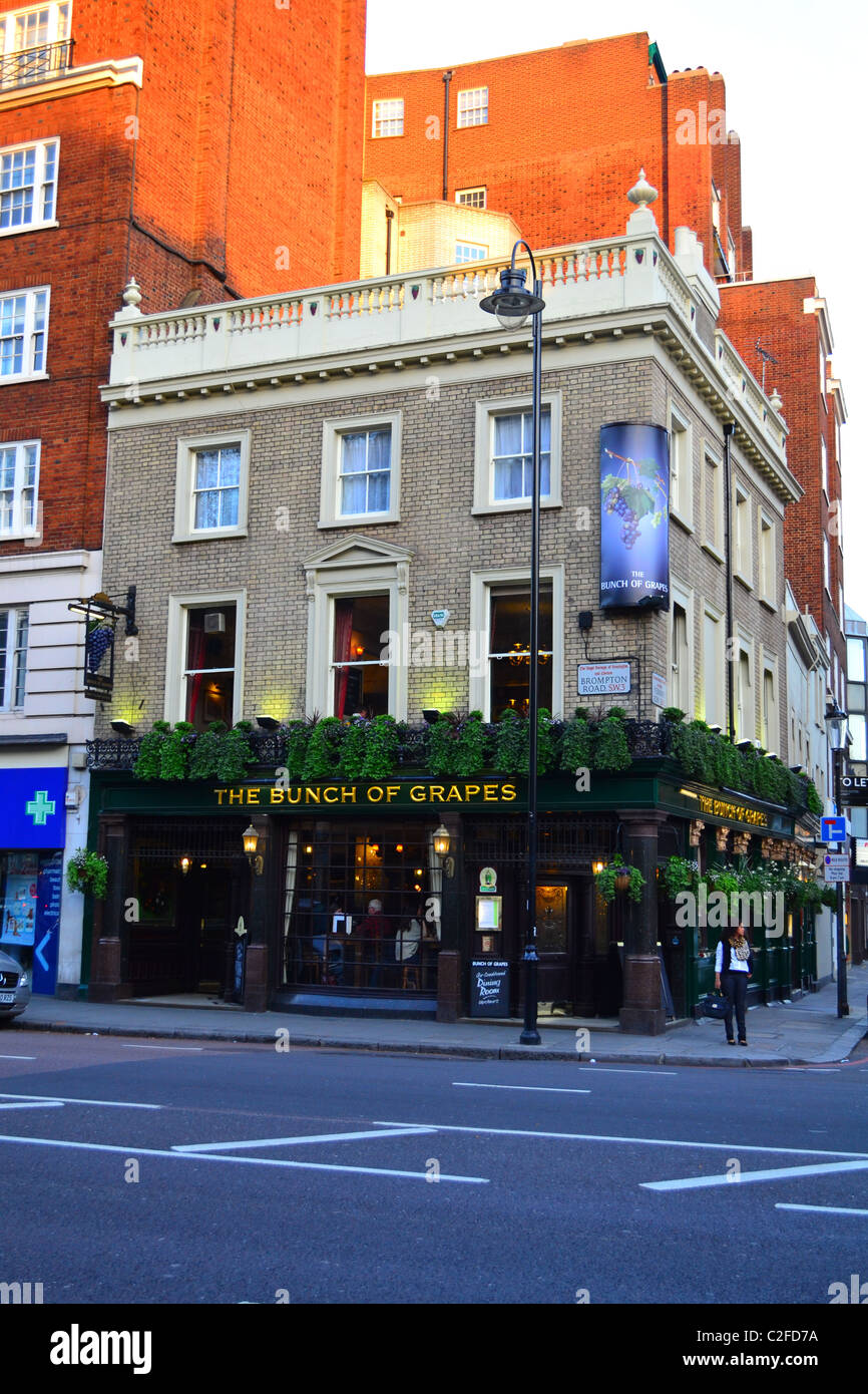 The 'Bunch of Grapes' pub, Knightsbridge - Stock Image