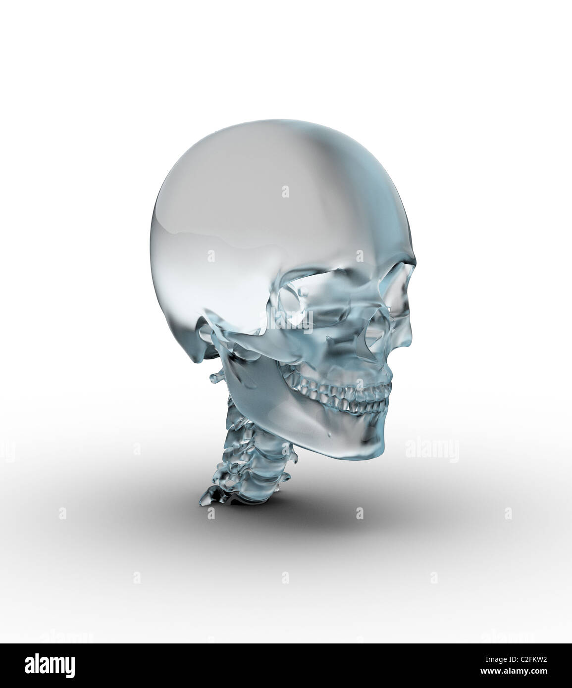 Male skull made of frosted glass. - Stock Image