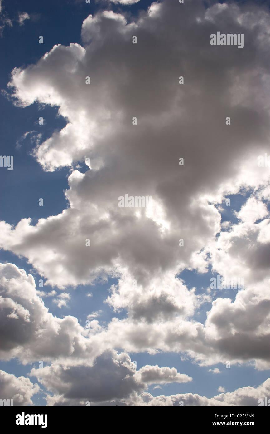 summer sky high cloud low cumulus high stratus blue white horizon day light sun sunny fluffy back drop - Stock Image