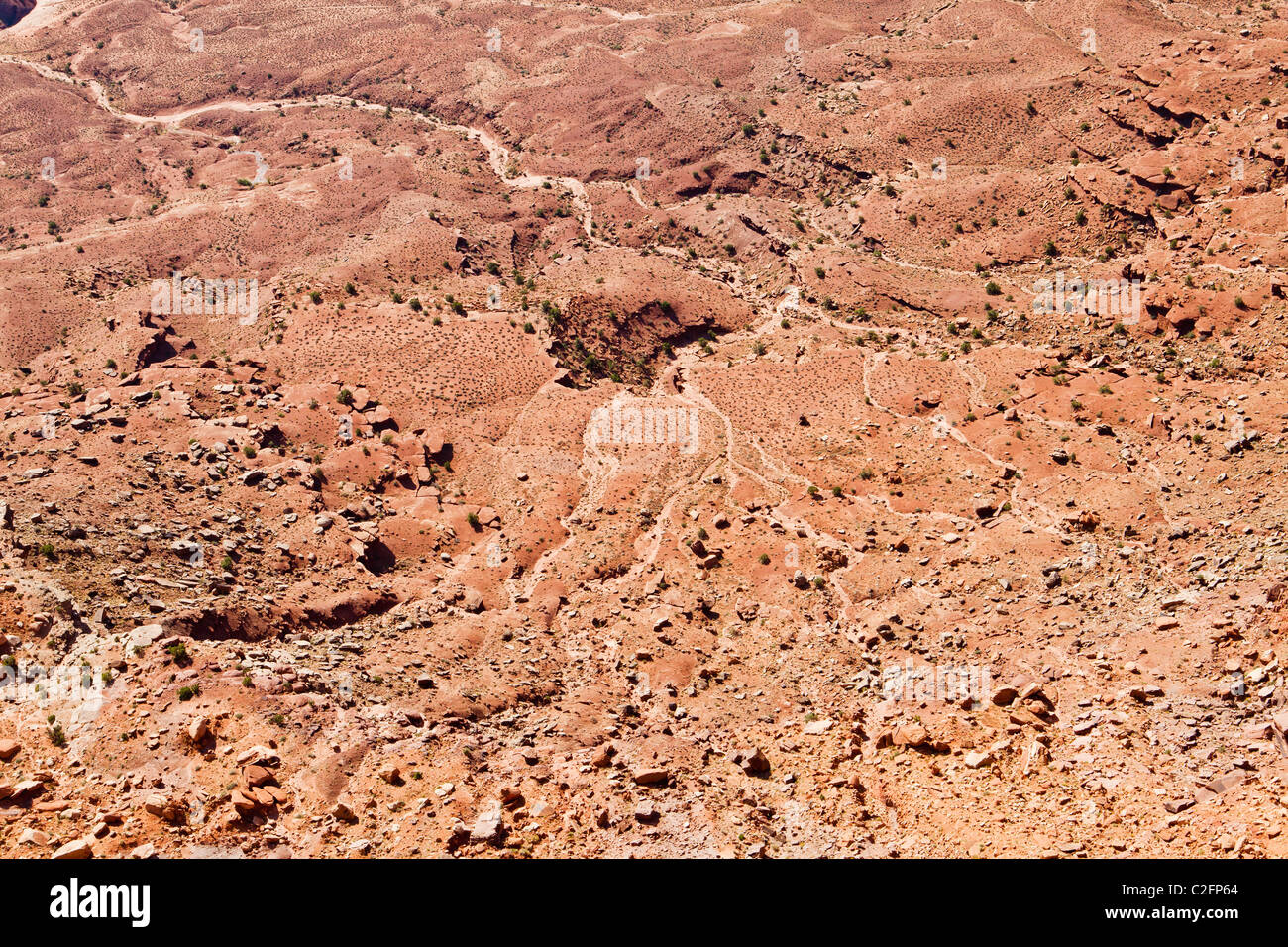 A detail shot looking down on a drainage basin in Canyonlands National Park, Utah, USA. - Stock Image