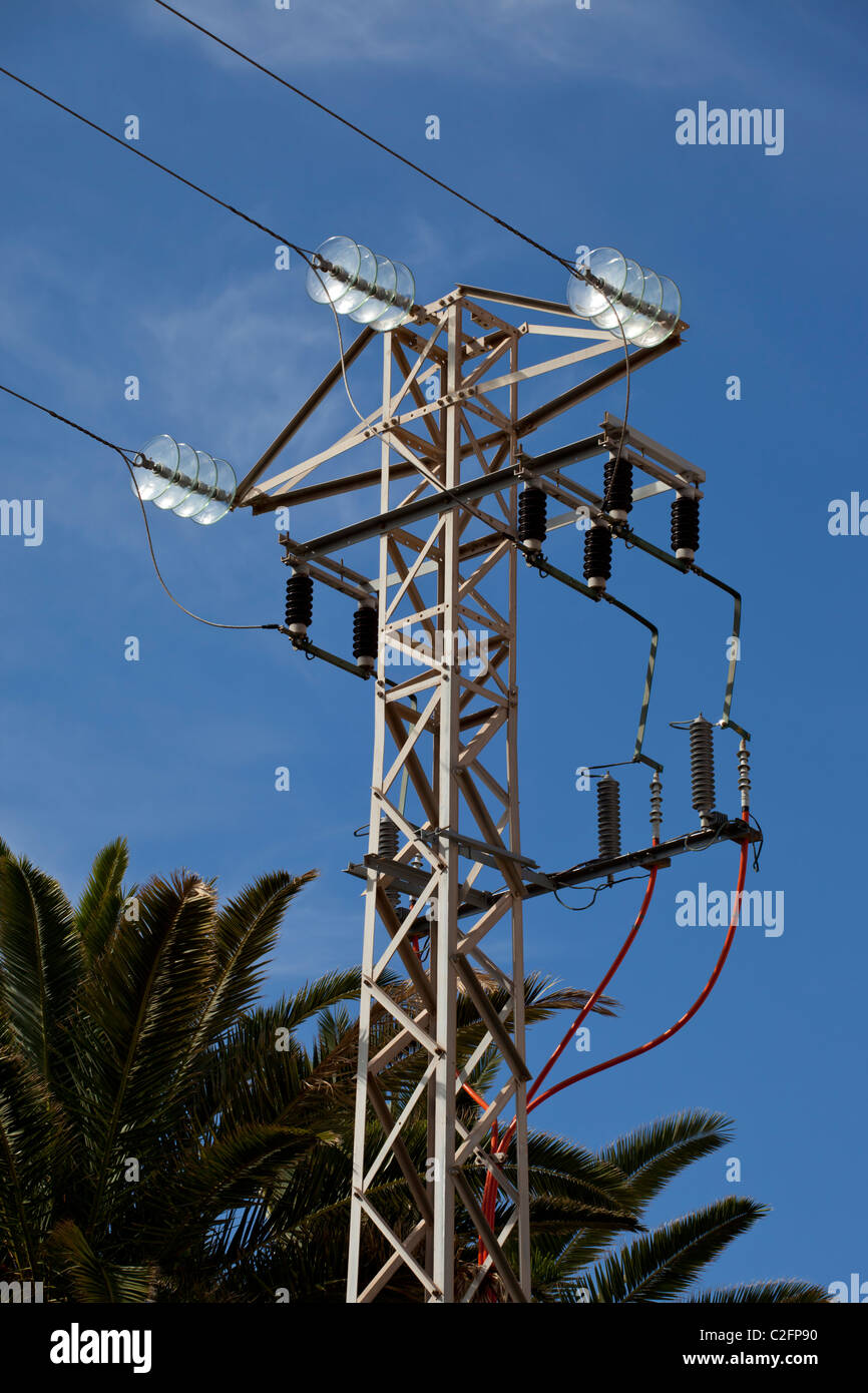 A small power pylon with blue sky and tropical foliage behind - Stock Image