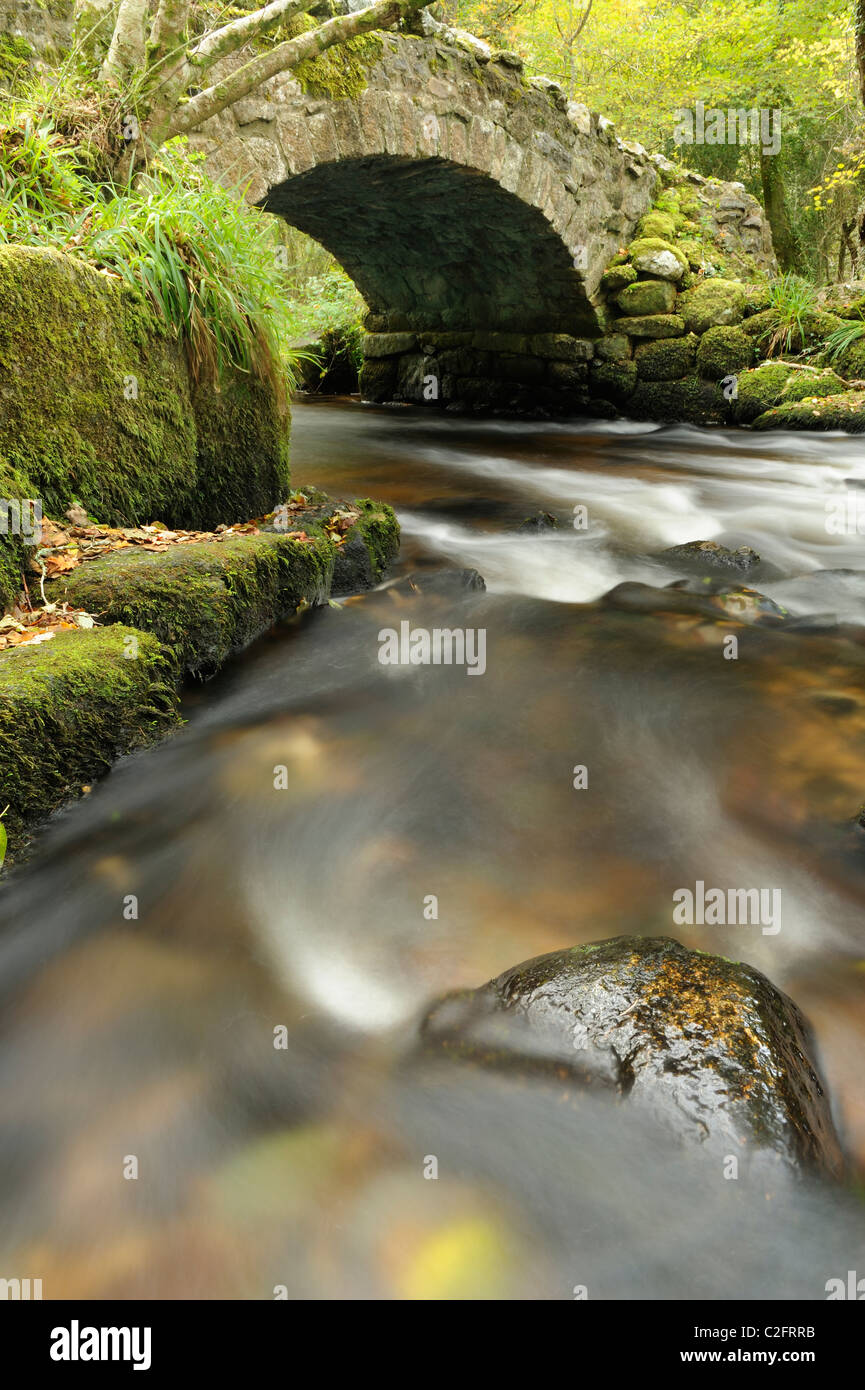 The River Bovey flowing under Hisley Bridge in Devon. - Stock Image