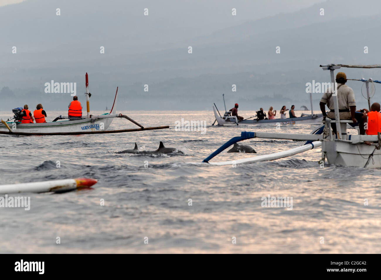 Dolphin watching, Bali, Indonesia, March 2011 - Stock Image