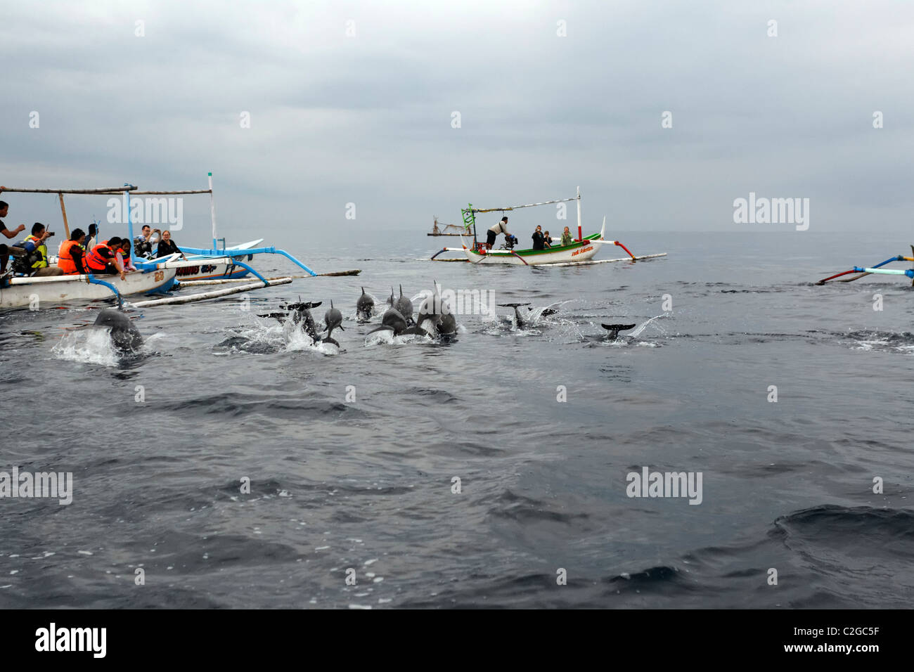 Dolphin watching, Bali, Indonesia, March 2011 Stock Photo