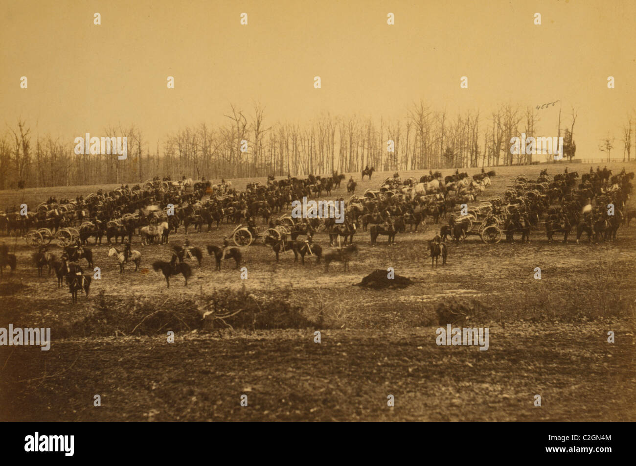 Horse artillery on parade grounds - Stock Image